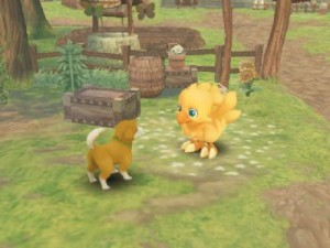Chocobo's Dungeon Release Slips (WII)