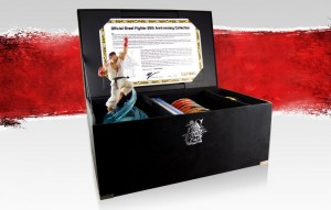 Street Fighter fans salivating in goodie based preperation for the 25th Anniversary Collector's Set (OTHER)